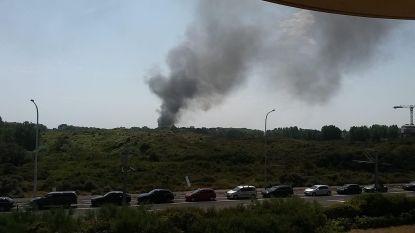 Drie bungalows in de as gelegd op camping Nieuwpoort: enorme rookpluim en brandweerman wordt onwel