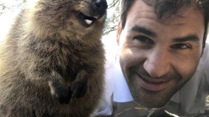 "Selfies met vrolijke mini-kangoeroes taboe voor Instagram: ""Dierenmishandeling"""