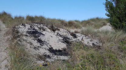 """Kustreddingsdienst vraagt waakzaamheid na duinenbrand: """"Geen sigaretten in duinen"""""""