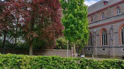 """Hans Proost (Groen): """"Waarom geen compromis met bouwheer over flats  in park?"""""""