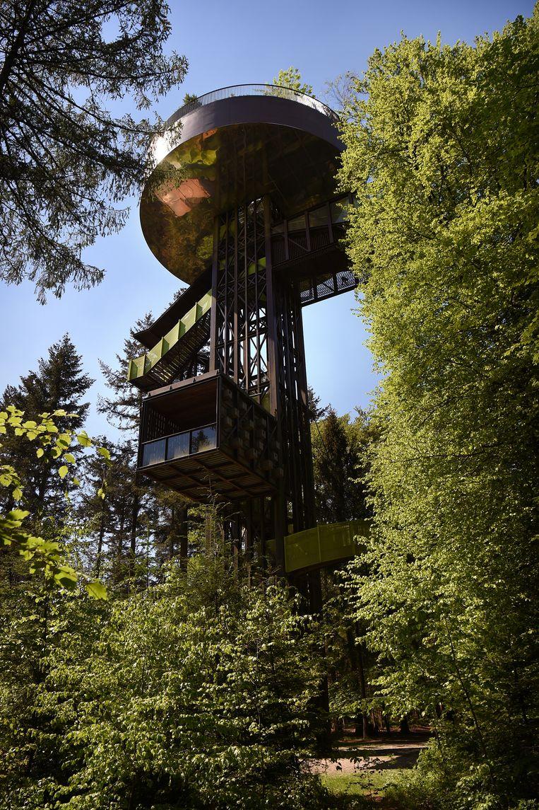 De 40 meter hoge Bostoren op Landgoed Schovenhorst in Putten. Een kaartje kost 4 euro. Foto Marcel van den Bergh / de Volkskrant Beeld Marcel van den Bergh