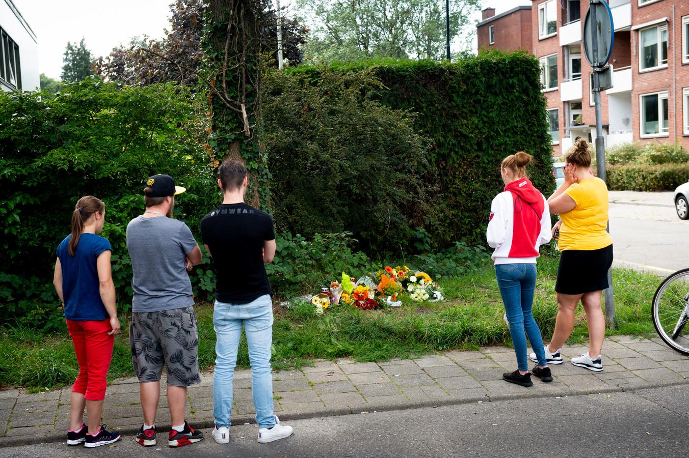 In de berm van de Kayersdijk en de kruising met de Haringvliet, op de plek waar Mike ter Halle met fatale gevolgen is aangereden, worden bloemen neergelegd ter nagedachtenis.