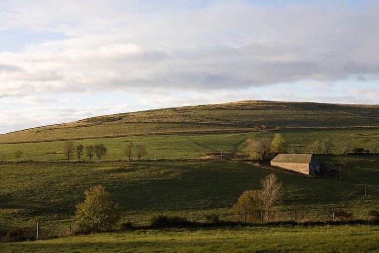 Het landschap van Aubrac. Beeld Ilse Frech
