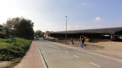 Provincie Vlaams-Brabant investeert in fietspad langs Nieuwelaan in Merchtem