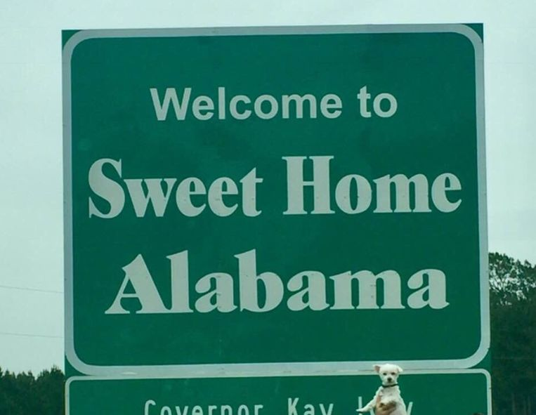 Bentley in Alabama!