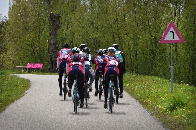 Ook het Gelderse Appeltern doet mee: een roze verkeersbord waarschuwt voor een haakse bocht. Beeld null