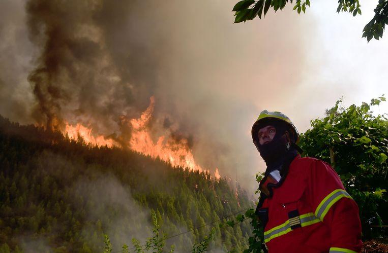 Een brandweerman kijkt toe terwijl een stuk Portugees bos in brand staat. Beeld AFP PHOTO / MIGUEL RIOPA