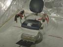 Tandartsstoel in de zeecontainer die bedoeld was als martelkamer.