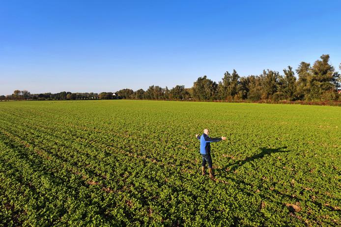 Op deze vier hectare, vrijwel uit het zicht, wil Barton Ants een zonnepark beginnen.