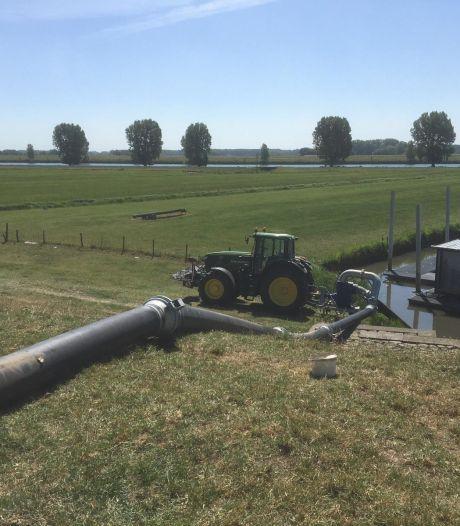 Waterschap Rivierenland neemt extra maatregelen vanwege aanhoudende droogte