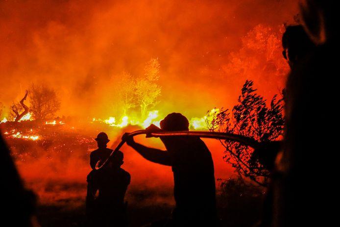 Brandweermannen bestrijden bosbranden in Portugal. (Archieffoto)