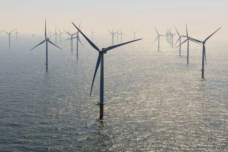 Een windmolenpark voor de Belgische kust.