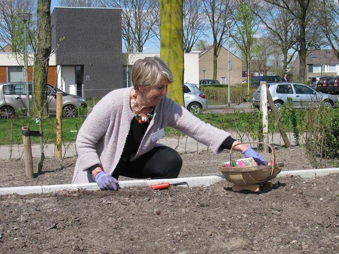 Charlotte de Windt plant uien
