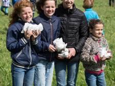 Waalbroodjes op 5 mei gedropt in onder meer Rossum en Zaltbommel