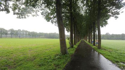 VIDEO. Nieuw filmpje Landschapspark Bulskampveld toont prachtige natuur