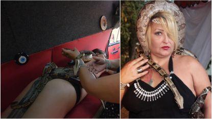 Ontspanning voor durvers: massage met wurgslangen