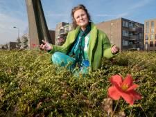 Kleurrijke bloemen van bloemenvrouwtje weggehaald: 'Ze is niet bereid om tot afspraken te komen'