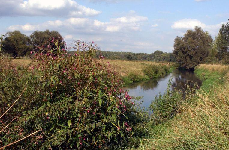 De ruiming van de Leibeek zal ervoor zorgen dat het water weer fatsoenlijk naar de Dijle kan afgevoerd worden.