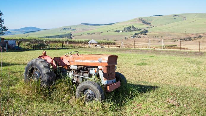 Un vieux tracteur de la marque Massey Ferguson (illustration).