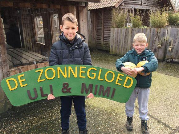 De broertjes Lars en Klaas hebben een houten uithangbord gemaakt voor de berenzussen Uli en Mimi.