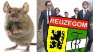 """""""Levende muis door blender tot moes herleid"""": Gaia stelt zich burgerlijke partij tegen Reuzegom"""