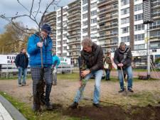 Actievoerders planten satirisch bos als voorproefje op 'meer groen' op de 'Blauwe Golven' van Arnhem