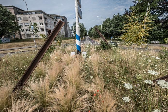 De verwilderde rotonde bij de kruising van Spoorstraat, Heijenseweg en Brabantweg. ,,Sommige mensen denken dat er zomaar wat groeit. Maar dat is niet zo.''