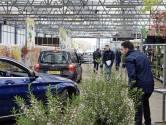 Corona maakt creatief: drive-in langs tuinplanten bij Kaatsheuvelse teler