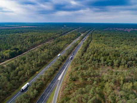 Gelderse politiek wil meer feiten over bomenkap langs A28 tussen Wezep en Harderwijk