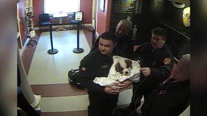 Agenten gebruiken Heimlich greep om puppy te redden van verstikking
