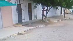 Man vlucht weg van boze vrouw en verstopt zich in boom