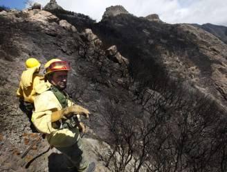 Nieuwe evacuaties voor bosbranden op Canarische Eilanden