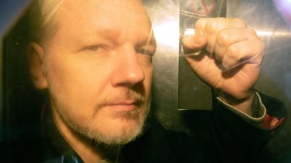 """VN-expert: """"Leven van Assange is in gevaar"""""""