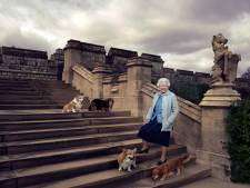 Laatste corgi koningin Elizabeth overleden