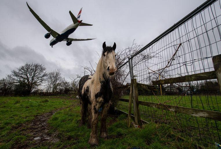 Landing op Heathrow Airport in Londen. Beeld Getty Images