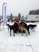 Stefan en Ilse Donker met hun sledehonden in de Italiaanse sneeuw.