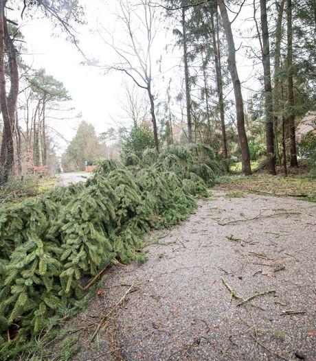 Staatsbosbeheer: 'Blijf weg uit bos Sallandse Heuvelrug'