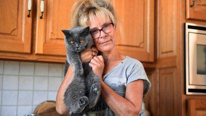 Al zeker vijf katten en hond vergiftigd, vier katten gestorven: dierenhater aan het werk in Nieuwrode?