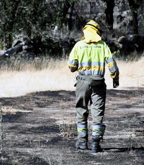 Frankrijk en Spanje zetten zich schrap voor bosbranden: 'Het is hier kurkdroog'