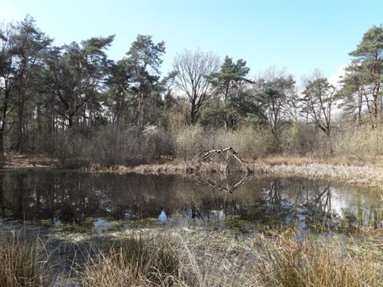 In december starten de werken in het natuurgebied.