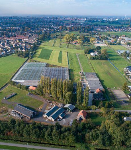 Tuinder dreigt (opnieuw) met gang naar de rechter als Kampen niet snel met een plan voor wijkje Tussenland in IJsselmuiden komt