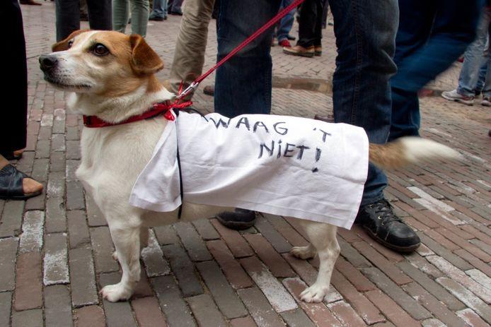 """""""Waag het niet"""" draagt dit hondje op zijn rug tijdens de demonstratie tegen de sluiting van het Historisch Museum. Foto Erna Lammers"""