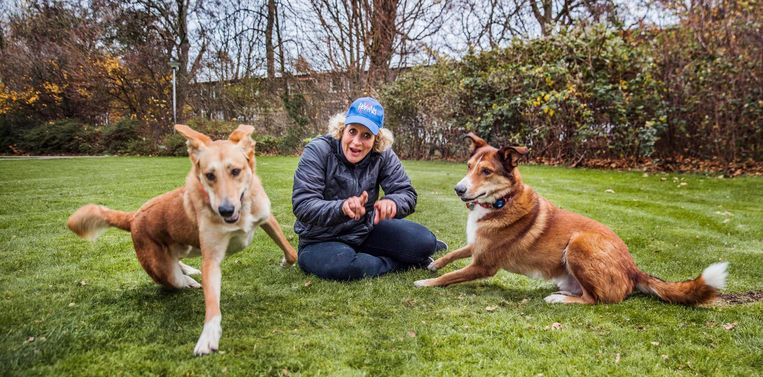 Zwerfhondenbezitter Iaira Boissevain: 'Het zijn oerhonden, waanzinnig sociaal.' Beeld Aurélie Geurts