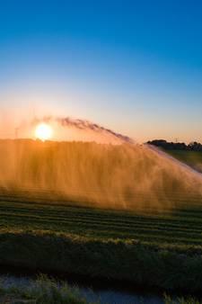Controle op beregenen aardappelen met mogelijk besmet water