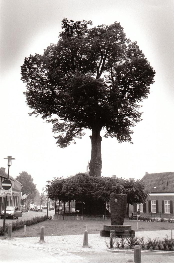 Lindeboom in Nuenen (1994).