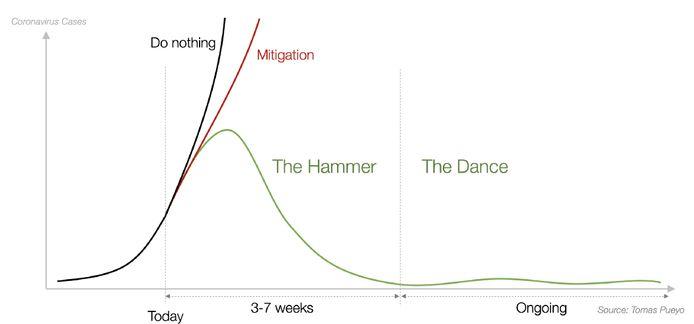 De bewuste grafiek die de Spaanse ingenieur Tomas Pueyo in maart online zette.