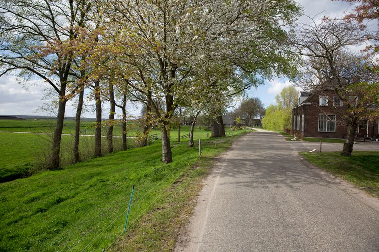 Op de foto links: Polder Dronthen, waar de gemeente Kampen het dorpje Reeve heeft gepland. Beeld Herman Engbers