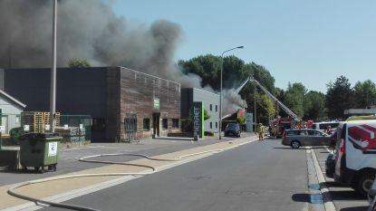 Indrukwekkende rookpluim bij zware industriebrand in Merelbeke