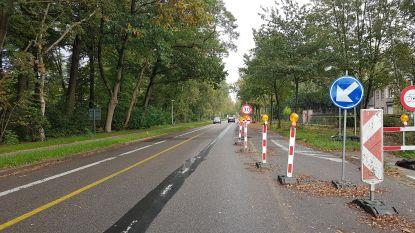 Bestuurders negeren massaal snelheidsbeperking langs werven in Brasschaat