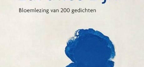 Zeeland is de blauwste zone van Nederland